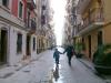 karamnova-barcelona-gaviota