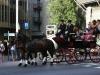 mirovodina-barcelona